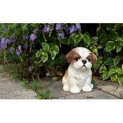 Dalmatian Puppy Statue Shih Tzu Puppy Shih Tzu Retriever Puppy
