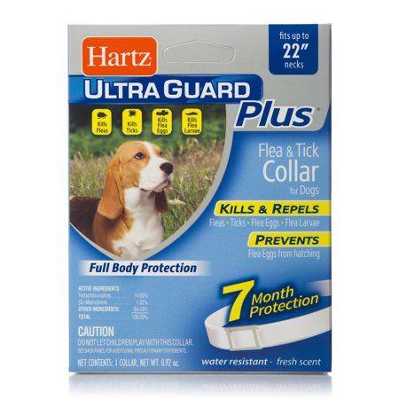 Hartz Ultra Guard Plus Flea Tick Collar For Dogs Blue Ticks On Dogs Fleas Ticks