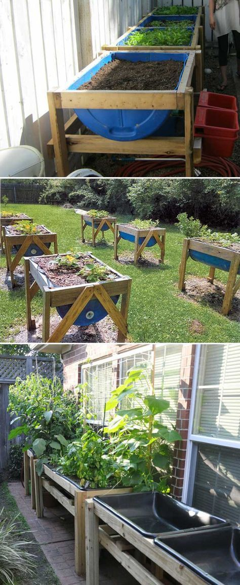 urban gardening small space raised garden bed on Upcycle 55 Gallon Drums For Raised Bed Gardens They Re High Enough That You Don T Have To Bend Ove Building A Raised Garden Small Space Gardening Garden Beds
