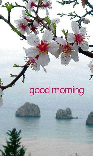 Good morning :)                                                       …