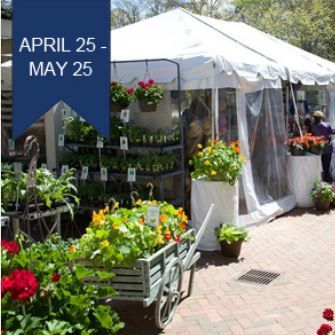 Amp April Dieselben Garden Historic Mai Mt Pflanzen Plant