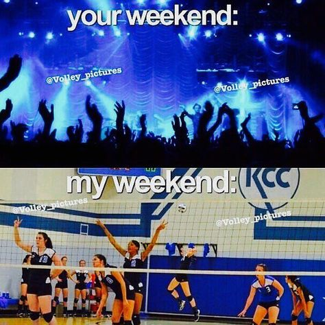 Being a volleyball player means you have no free weekends. Source by Arianaluvspanda Volleyball Problems, Funny Volleyball Shirts, Volleyball Practice, Volleyball Training, Volleyball Workouts, Coaching Volleyball, Volleyball Hair, Funny Volleyball Pictures, Volleyball Facts