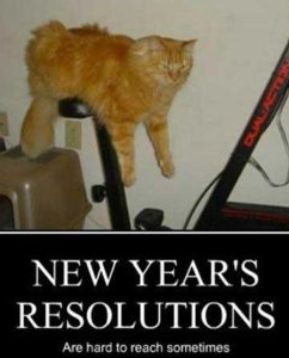 New Year Memes Resolutions And Funny Humor New Year Meme Funny New Years Memes New Year Jokes