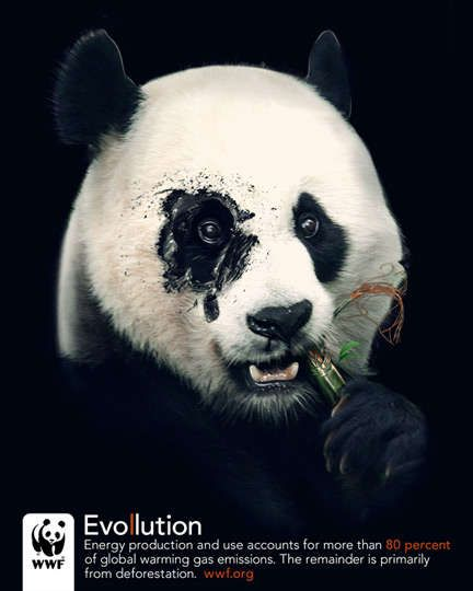 Connu WWF Bluefin Tuna overfishing: Panda | Awareness Ads | Pinterest OP97