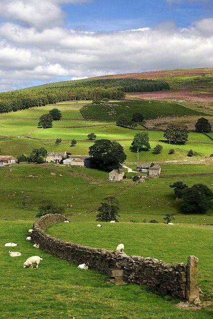 Yorkshire Dales, England KB: My beloved Yorkshire. So, so pretty. Yorkshire England, Yorkshire Dales, North Yorkshire, Beau Site, England And Scotland, England Uk, Northern England, British Countryside, British Isles