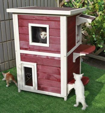 Top 10 Best Outdoor Cat Houses In 2019 Outdoor Cat House Cardboard Cat House Cat House