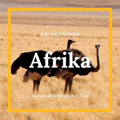 Afrika Ist Ein Vielfaltiger Kontinent Mit Unterschiedlichsten