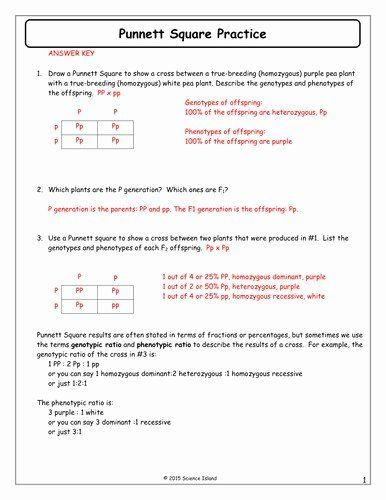 Pin On Teaching Ideas Worksheets