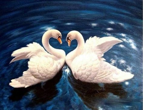 Swan Lake Heart - Paint by Number Kit. Fast Shipping! by OurPaintAddictions