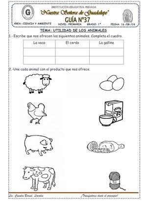 Utilidad De Los Animales37 Ciencia Preescolar Libros De