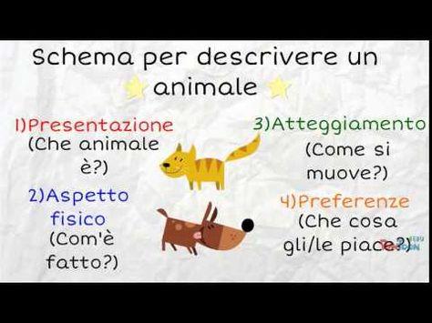 Ancona Nord: Il testo descrittivo