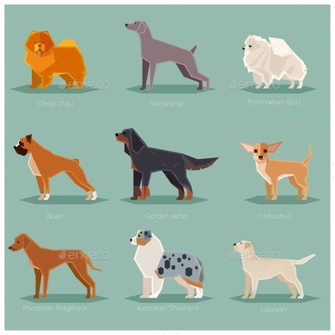 Dog Flat Icons Set Dogs Dog Illustration Flat Icons Set