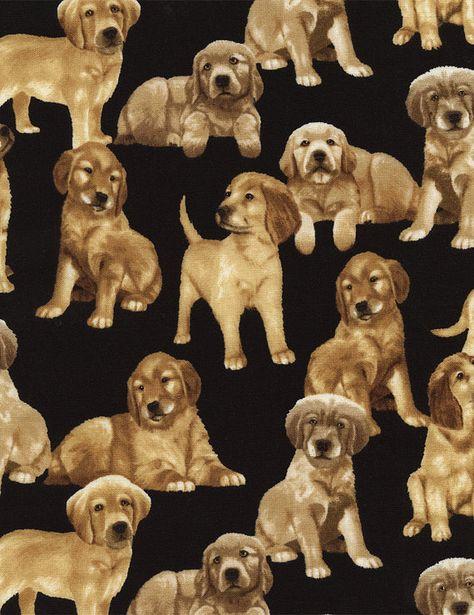 Pet Dog Golden Retriever Black Timeless Treasures YARD Animal Fabric