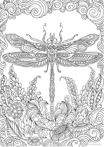 Zentangle Dragonfly coloring page | Free Printable Coloring Pages | 499x353
