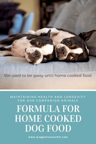 Home Made Dog Food Is Easy Once You Know The Formula Dog Food