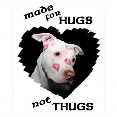 Easiestwaystotraindogs Dog Behavior Problems Aggressive Dog Dog Behavior