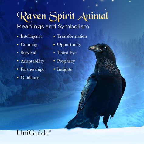 Raven Spirit Animal, Animal Spirit Guides, Your Spirit Animal, Meaning Of Raven, Raven Totem, Animal Meanings, Wiccan Spell Book, Libra, Power Animal