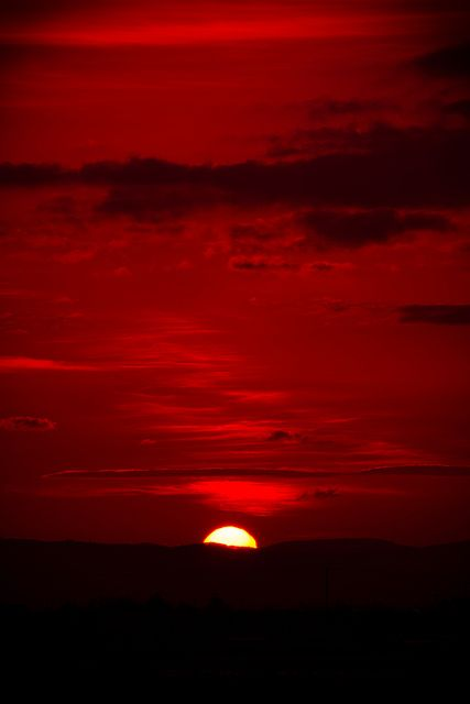 ~ Beautiful sunset: Red sky at night, sailor's delight - Red sky at morning, sailor's take warning. Aesthetic Colors, Aesthetic Pictures, White Aesthetic, Photo Wall Collage, Picture Wall, Aesthetic Iphone Wallpaper, Aesthetic Wallpapers, Wallpaper Tumblrs, Red Pictures