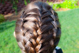 Layered Triple French Braid with instructional video @ Princess Piggies