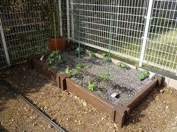 畑 庭 仕切り の画像検索結果 菜園 畑 庭