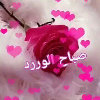 الـقــرم On Twitter صباح الخير وصباح الورد Jumma Mubarik Rose Twitter Sign Up