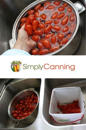 Canning Tomatoes Learn Best Methods For Safely Preserving