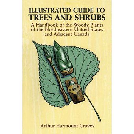 Illustrated Guide To Trees And Shrubs A Handbook Of The Woody Plants Of The Northeastern United States And Adjacent Canada Revised Edition Paperback Walma In 2020 Shrubs Trees And Shrubs