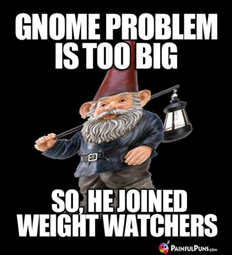 939416a9c7d43507a5d6052c9d1b6cd0 funny gnomes diet meme diet meme gnome problem is too big, so he joined weight watchers