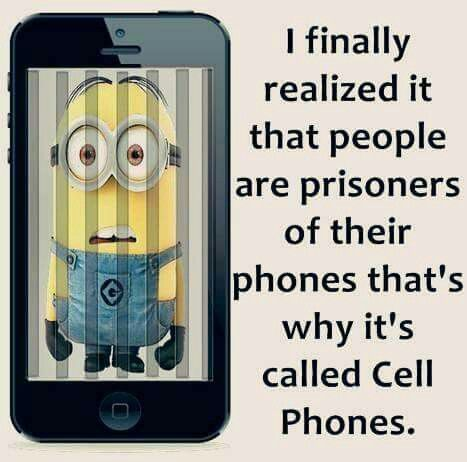 Cell Phone Quotes Brilliant Pcola On  Humor Funny Quotes And Funny Minion