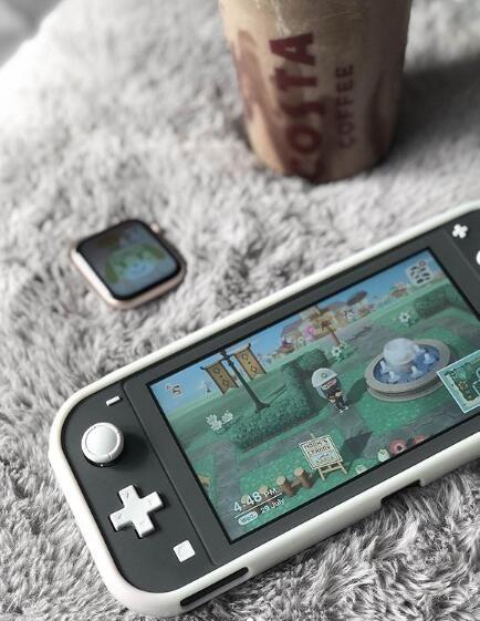 Nintendo Lite, Nintendo Games, Nintendo Switch Case, Gaming Room Setup, Pc Setup, Nintendo Switch Accessories, Pinturas Disney, Game Room Design, Gamer Room