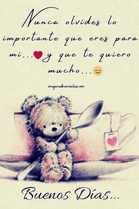 Nunca olvides lo importante que eres para mi... ♥ y que te quiero mucho... 😑. Buenos Dias.
