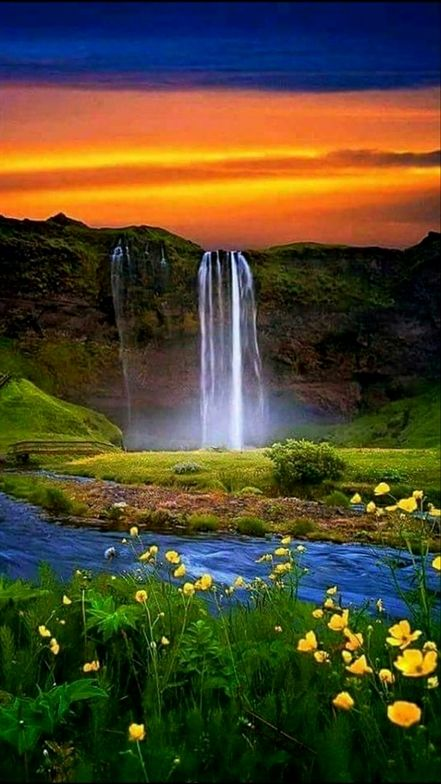 Read This Article To Better Your Photography Skills Beautiful Nature Nature Pictures