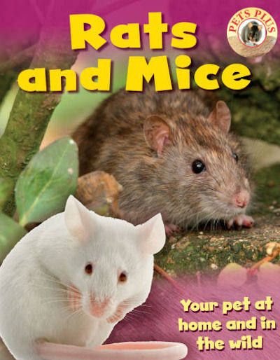 Rats And Mice 13 Pets Plus Class Pet Pets Pet Day