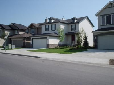 Condos For Rent Calgary House Rental Condos For Rent Apartments For Rent