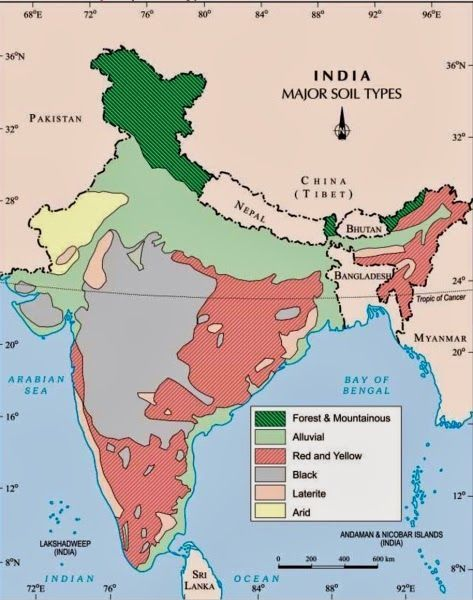 ICSE Solutions for Class 10 Geography - Soils in India - A