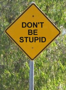 On the road - Don't Be Stupid