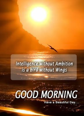 Happy Morning Images Top Lovely Good Morning Quotes And Sayings In