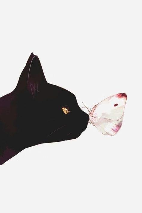 black cat and butterfly. katze. katze. katze.