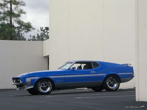 Ford Mustang Boss 351 Muscle Cars Ford Mustang Mustang