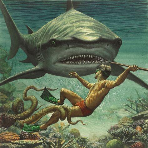 """""""I Fought the Sea Killer"""" 1956 illustration for a men's adventure magazine by Mort Kunstler Norman Rockwell, Octopus, Albert Dubout, Le Kraken, Shark Art, Big Shark, Scary Shark, Adventure Magazine, Underwater Art"""