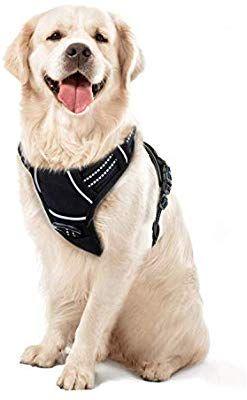 Amazon Com Walktofine Dog Harness No Pull Reflective