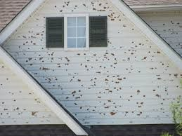 Hail Wind Water Damage Insuranceclaim Publicadjusters Publicadjuster Hail Storm Roof Repair Outdoor Decor
