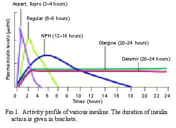 insulin action times chart: American diabetes association nph insulin bad reaction