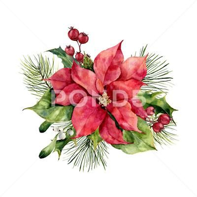 Watercolor Poinsettia With Christmas Floral Decor Hand Painted Traditional Stock Illustration Ad Christmas Watercolor Christmas Floral Decor Christmas Prints