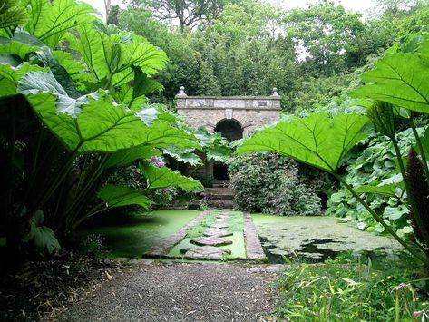 Les Jardins De Kerdalo Jardins A Voir Pinterest Garden Garden
