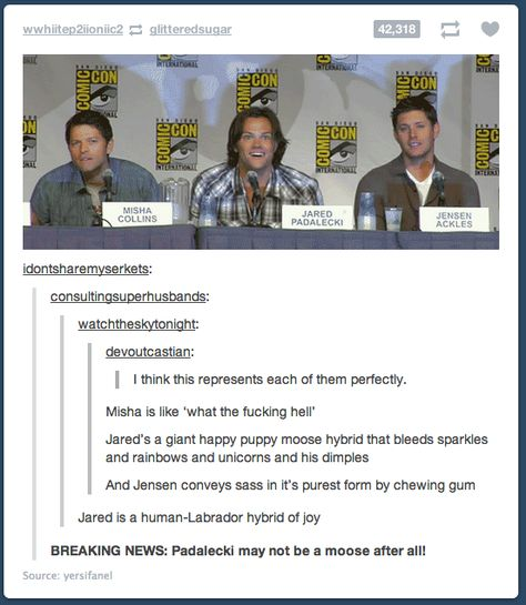 moose hybrid <-- All that I can see is the fact that Jared looks like he is high on...something. I don't even know excuse the cuss