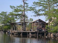 Louisiana Swamp Houses For Sale Louisiana Swamp Swamp Places To Travel