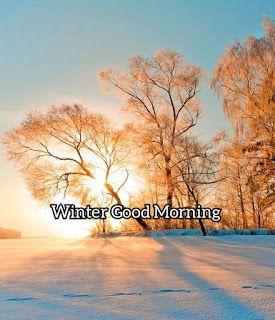 Fakibazzspot Winter Good Morning Images Free Download Good Morning Images Morning Images Good Morning Images Download