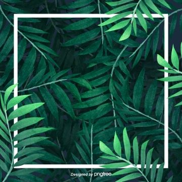 Leaf Background Decoration Material Green Leaves Banana Leaves Green Png Transparent Clipart Image And Psd File For Free Download Leaf Background Frame Background Palm Background