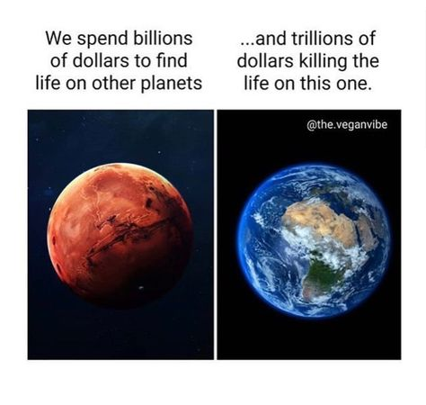 What's the point? Focus on saving earth first. THAT is our first priority